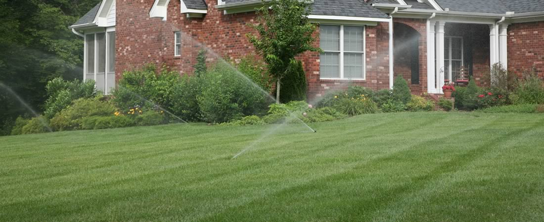 DreamScapes - Irrigation Services